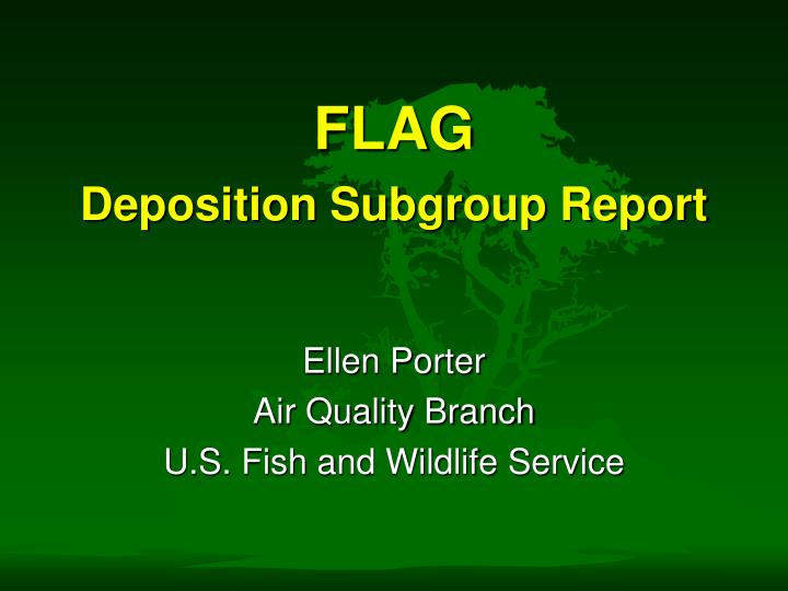 Flag deposition subgroup report