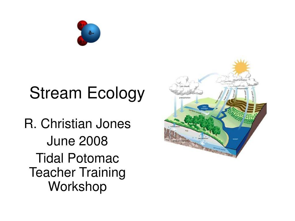 stream ecology l.