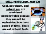 coal petroleum and gas