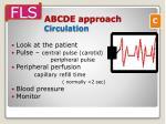 abcde approach circulation