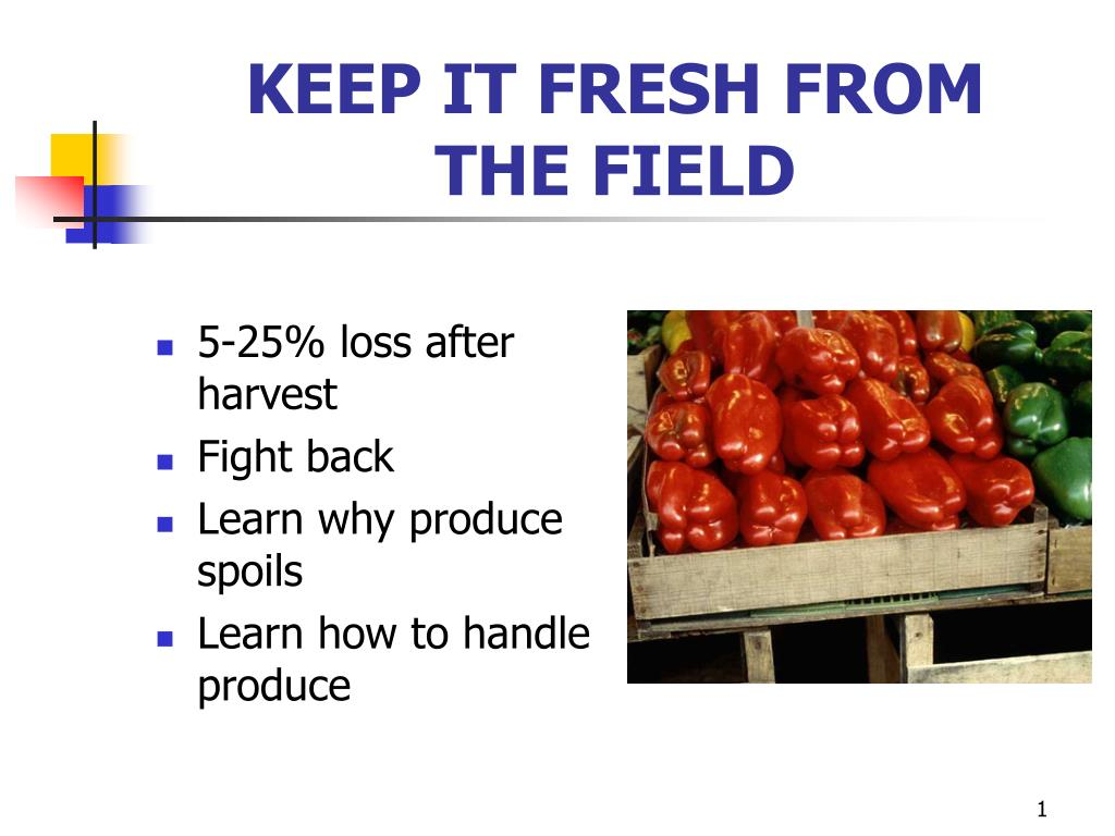 keep it fresh from the field l.