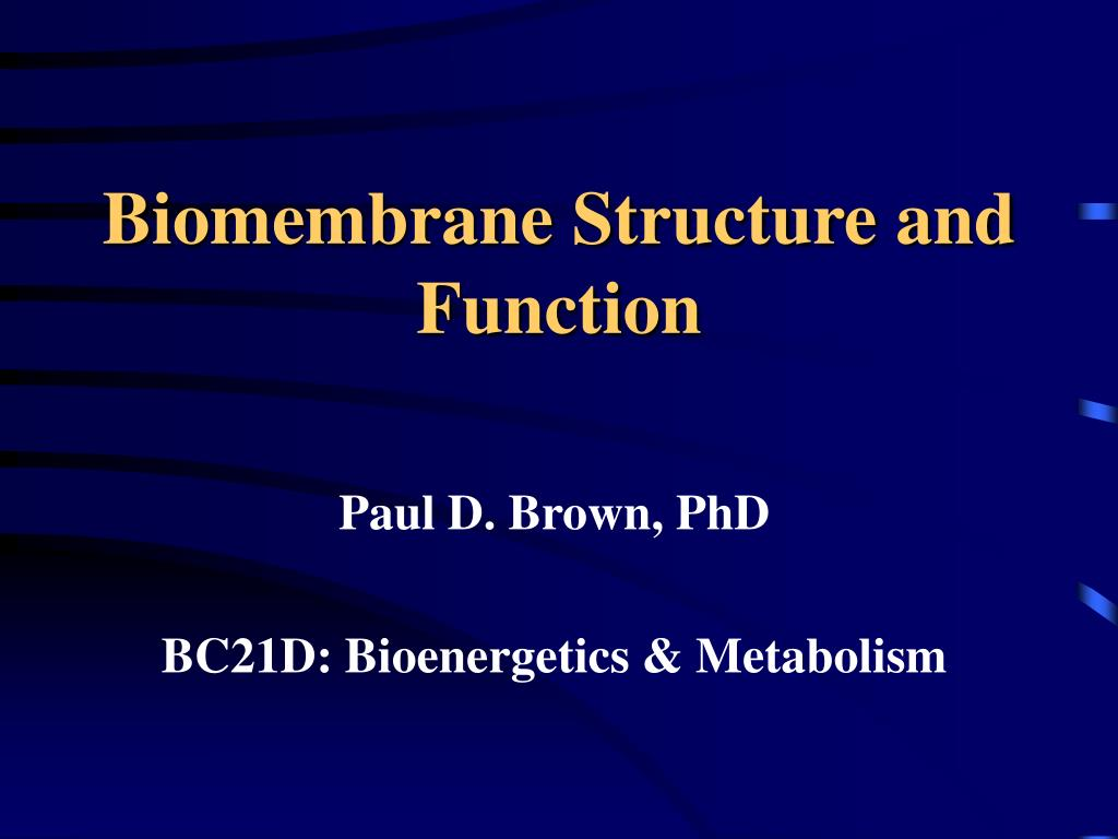 biomembrane structure and function l.