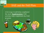 sae and the full plate35