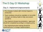 the 5 day ci workshop28