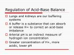 regulation of acid base balance