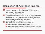 regulation of acid base balance34