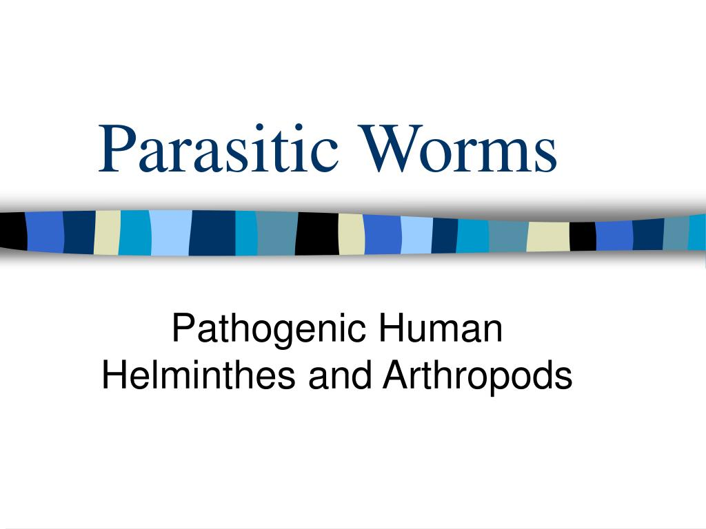 parasitic worms l.