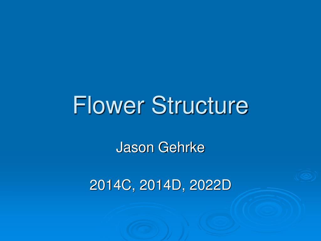 flower structure l.
