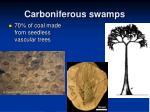 carboniferous swamps