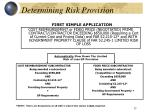 determining risk provision