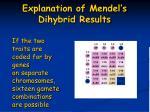 explanation of mendel s dihybrid results