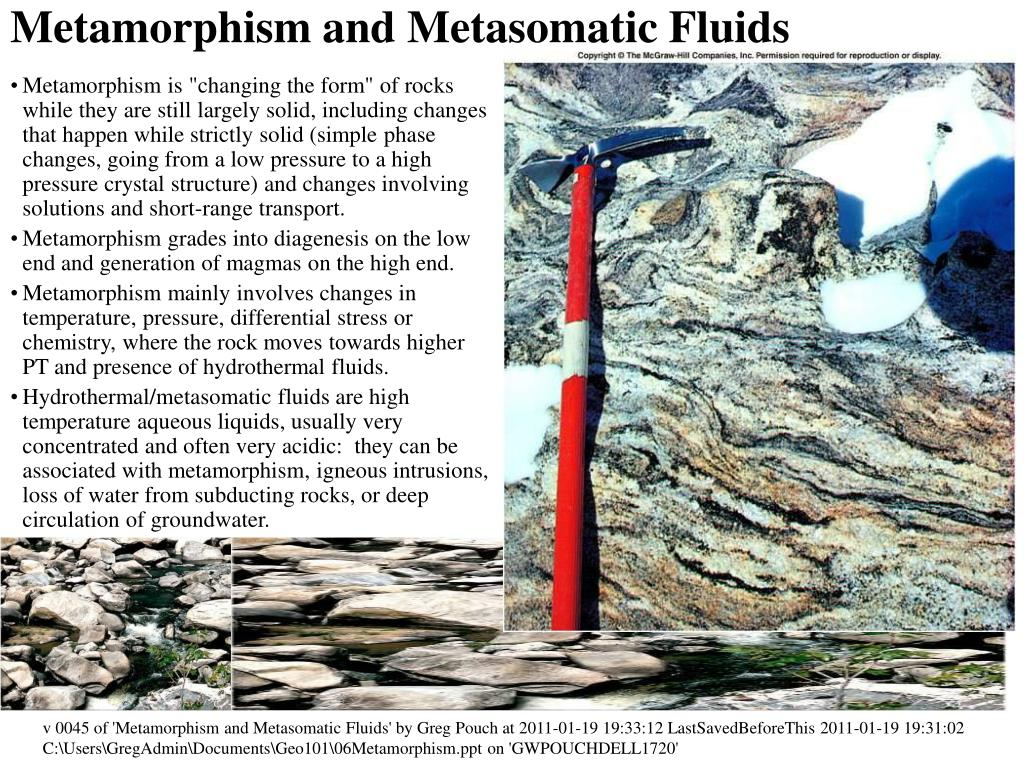metamorphism and metasomatic fluids l.