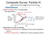 composite survey particle iii