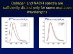 collagen and nadh spectra are sufficiently distinct only for some excitation wavelengths
