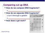 comparing cut up dna