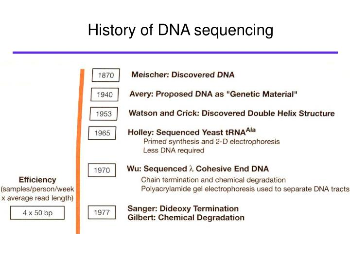 history of dna The dna sequence of each strand of the helix is thus exposed and as the temperature is lowered the primers automatically bind to their complementary portions of the dna sample at the same time, the enzyme links the loose nucleotides to the primer and to each of the separated dna strands in the appropriate sequence.
