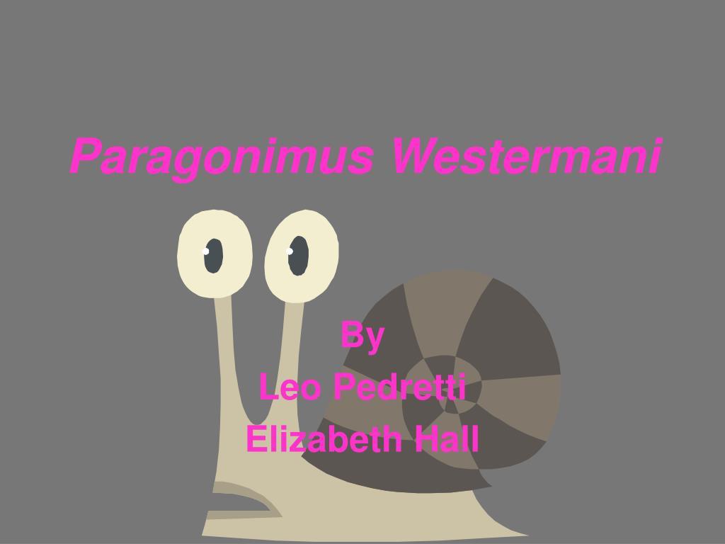 paragonimus westermani l.