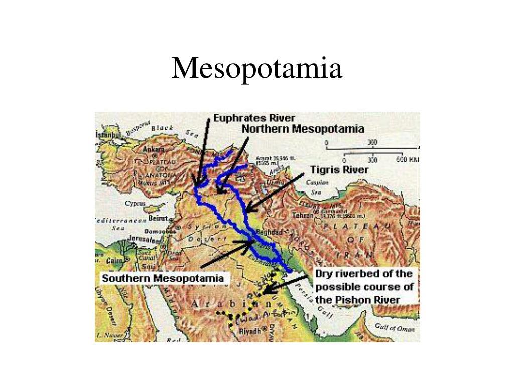 mesopotamia l.
