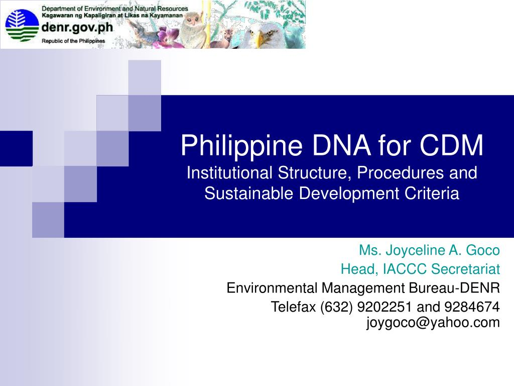 philippine dna for cdm institutional structure procedures and sustainable development criteria l.