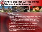 critical steps for success of first nations specific blueprint