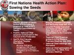 first nations health action plan sowing the seeds