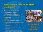 what is your role as an mwr employee