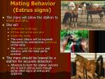 mating behavior estrus signs
