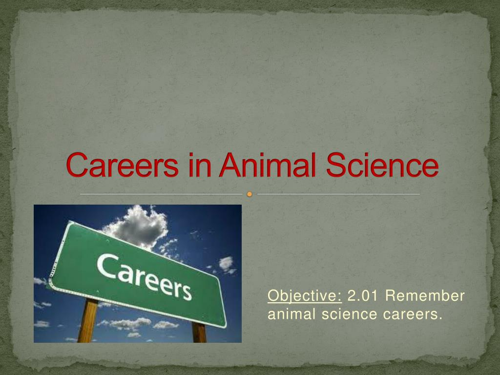 careers in animal science l.