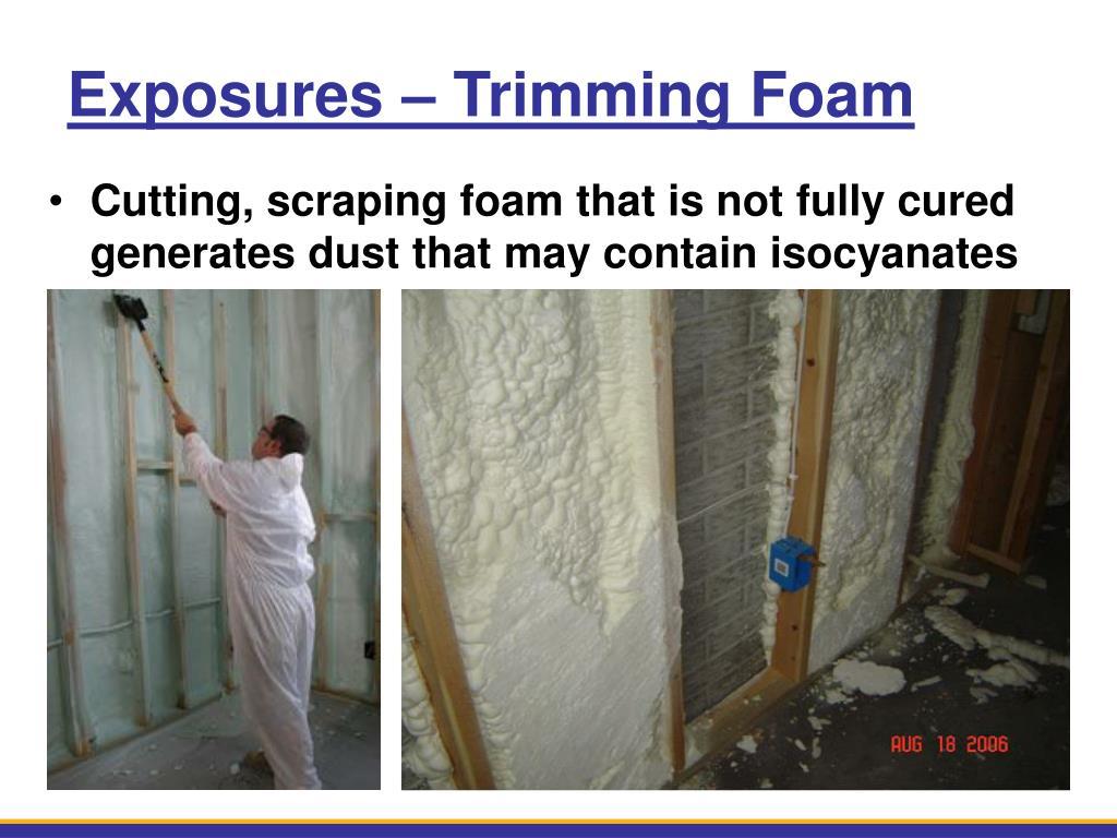 Exposures – Trimming Foam