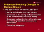 processes inducing changes in cement sheath
