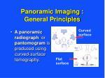 panoramic imaging general principles8