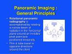 panoramic imaging general principles9