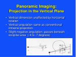 panoramic imaging projection in the vertical plane