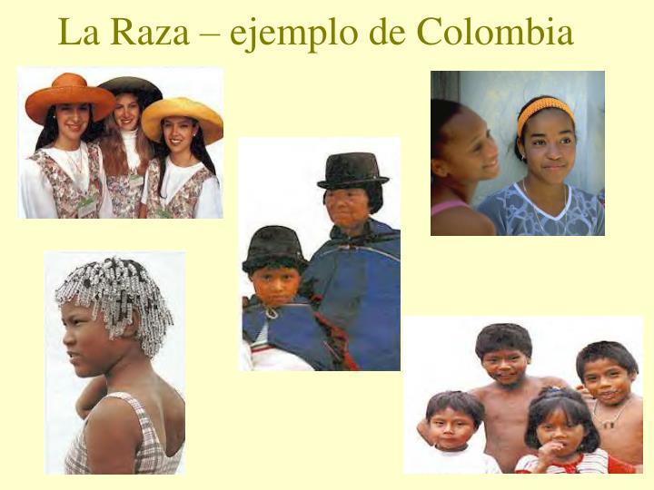 La raza ejemplo de colombia