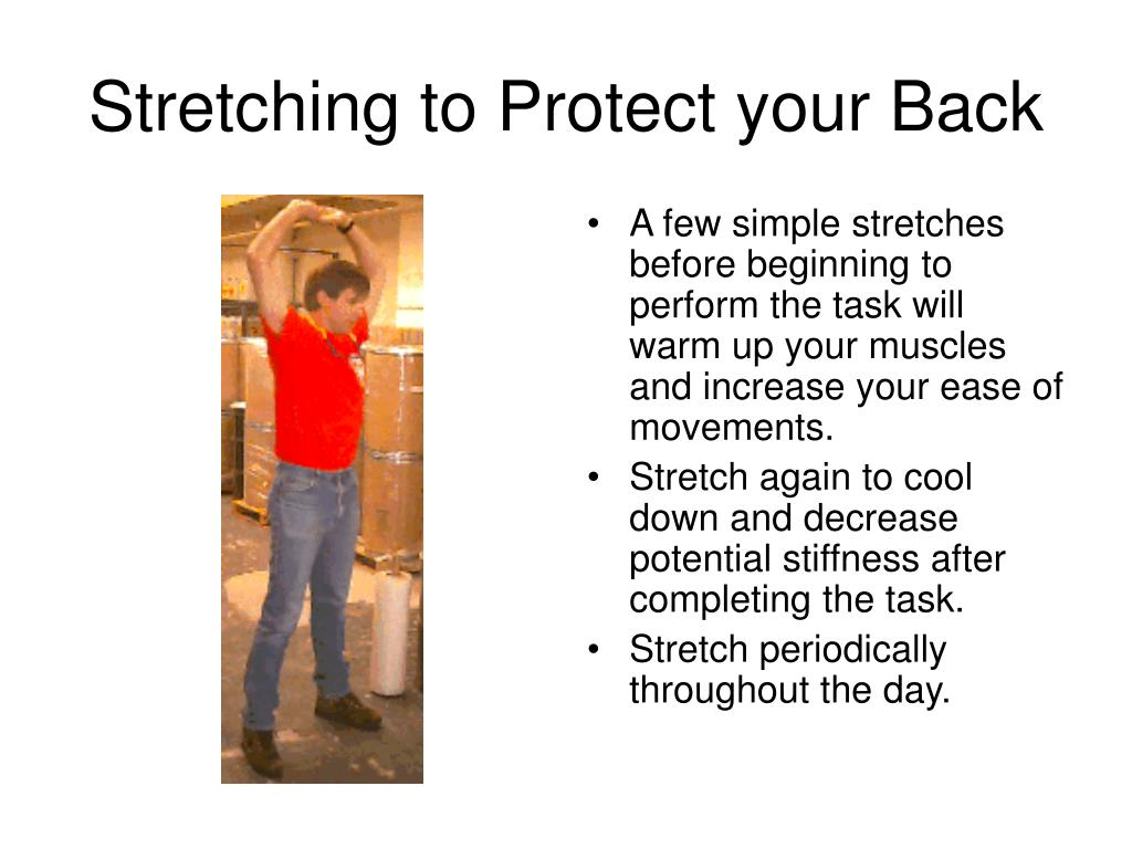 Stretching to Protect your Back