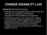 chinese disability law10