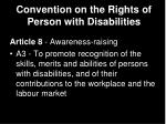 convention on the rights of person with disabilities