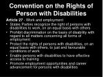 convention on the rights of person with disabilities29