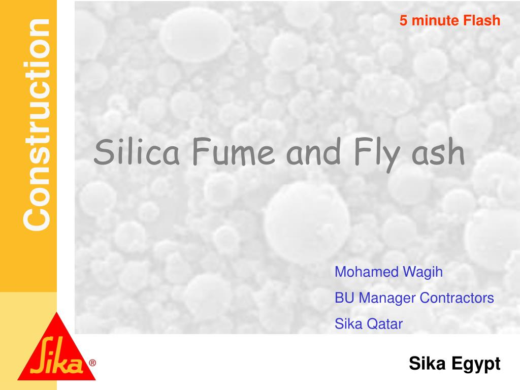silica fume and fly ash l.