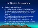 a neuro assessment