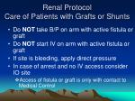 renal protocol care of patients with grafts or shunts