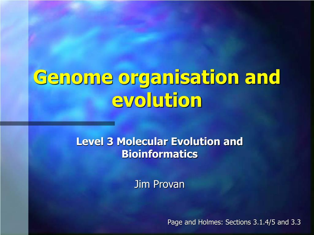genome organisation and evolution l.