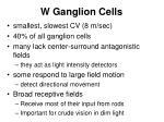 w ganglion cells