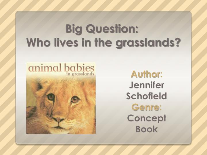 big question who lives in the grasslands n.
