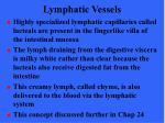 lymphatic vessels13