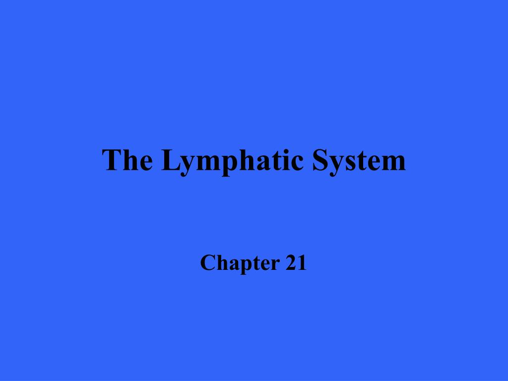 the lymphatic system l.