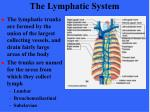 the lymphatic system16