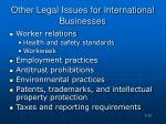other legal issues for international businesses
