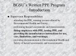 bgsu s written ppe program introduction10