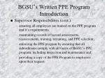 bgsu s written ppe program introduction11